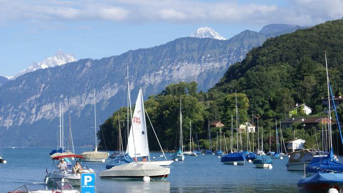 Removals to Thun Switzerland