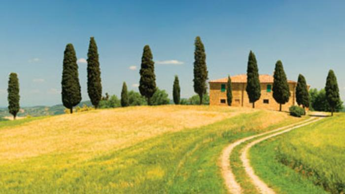 Removals to Tuscany