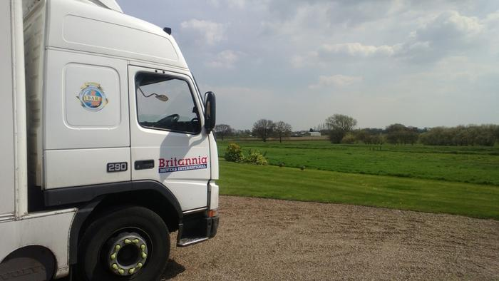 Removals Thorne