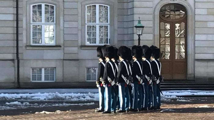 Danish Guards