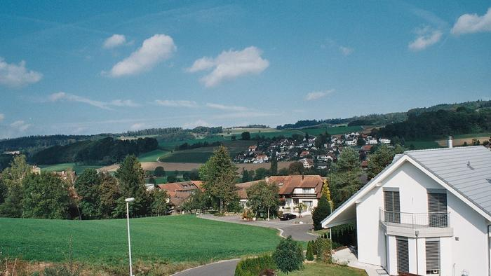 Removals From Baden Switzerland